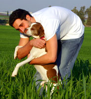 Man Holding Brown and White Dog